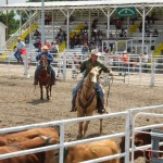 Colorado Ranch Rodeo Culling Event photo image.