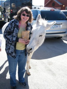 Kathy and her new 4 legged friend in Oatman