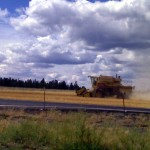 Combine harvesting wheat in Colbert WA just south of Deer Park.